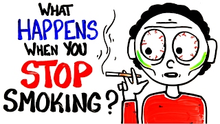 What Occurs When You Stop Smoking?
