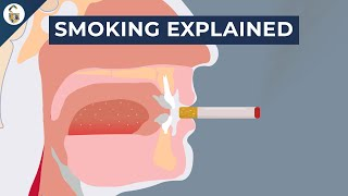 Why Give Up Smoking?